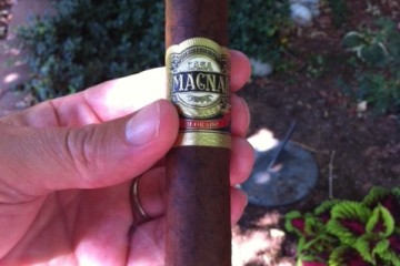 The Casa Magna Colorado Robusto