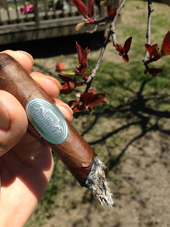 Smoking and reviewing Room 101 Daruma cigar