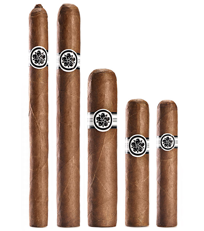 Room101 Master Collection Three cigars