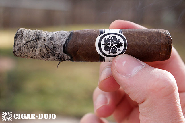 Room101 Master Collection Three Roxxo cigar review