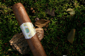 Warped Cigars Flor Del Valle cigar review