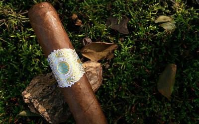 Warped Cigars Flor Del Valle cigar review