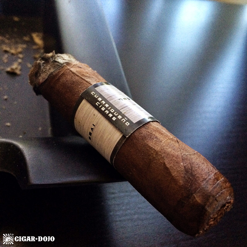 Cubariqueño Protocol cigar review