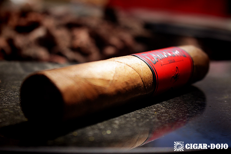 Camacho Corojo Gordo cigar review