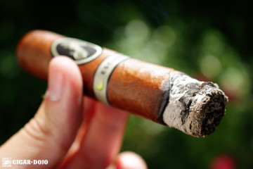 Davidoff Escurio cigar review