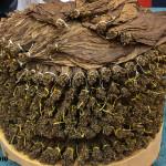 CAO Pilón Cuban-style circular tobacco pilón
