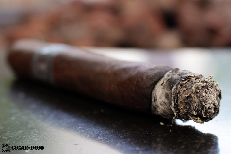 The Rake by MoyaRuiz cigar review