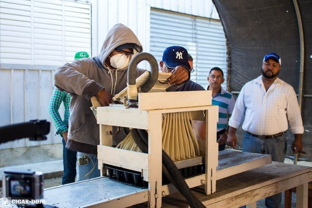 Nursery seeding machine General Cigar Dominicana