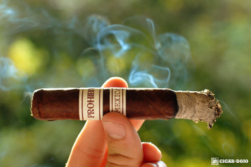 Rocky Patel Prohibition Mexican San Andreas maduro cigar review