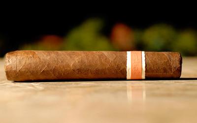 RoMa Craft Neanderthal HN cigar review