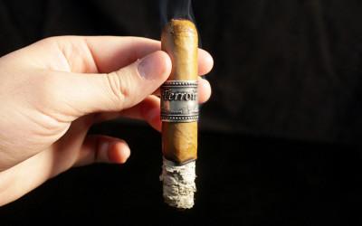 Chinnock Cellars Terroir cigar review