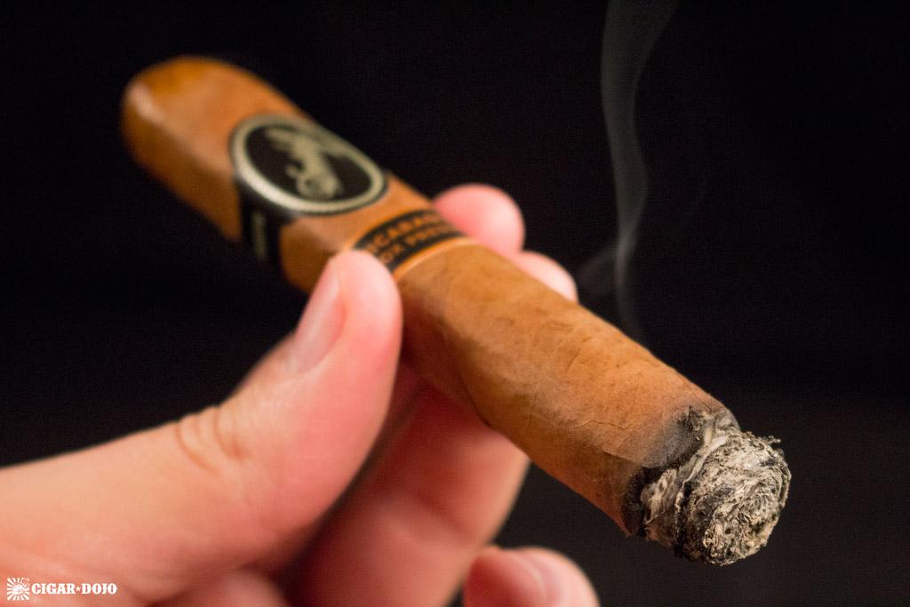 Davidoff Nicaragua Box Pressed cigar review