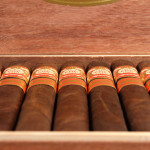 FDG Cigars 20 Aniversario Maduro toro cigars