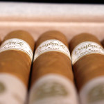 Room101 The Big Payback Connecticut robusto cigars