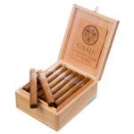 Bombay Tobak Gaaja cigar box open