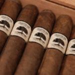 Foundation Cigar Co. Charter Oak cigars