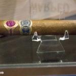 Warped Maestro del Tiempo cigar IPCPR 2016