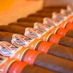 AVO Syncro Nicaragua Fogata Short Torpedo cigars