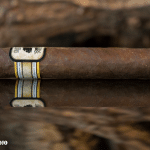 Foundation Cigar Co. Charter Oak Broadleaf cigar side