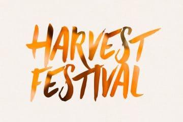 Cigar Dojo Harvest Fest cigar contest
