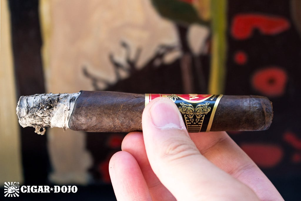 Eiroa The First 20 Years robusto cigar review