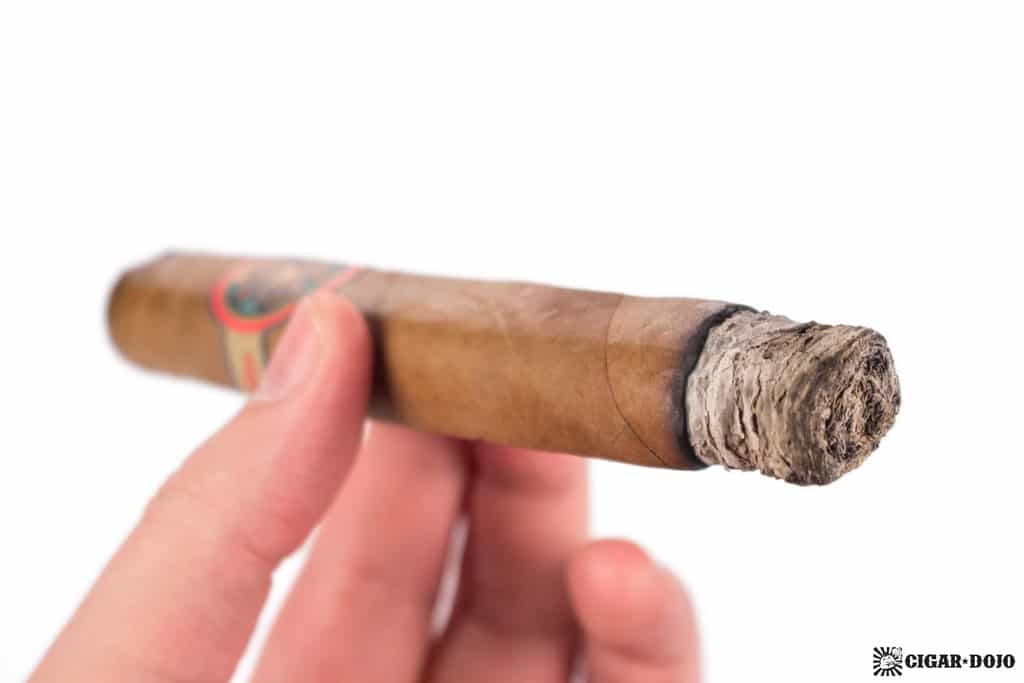 Bombay Tobak Gaaja cigar smoking