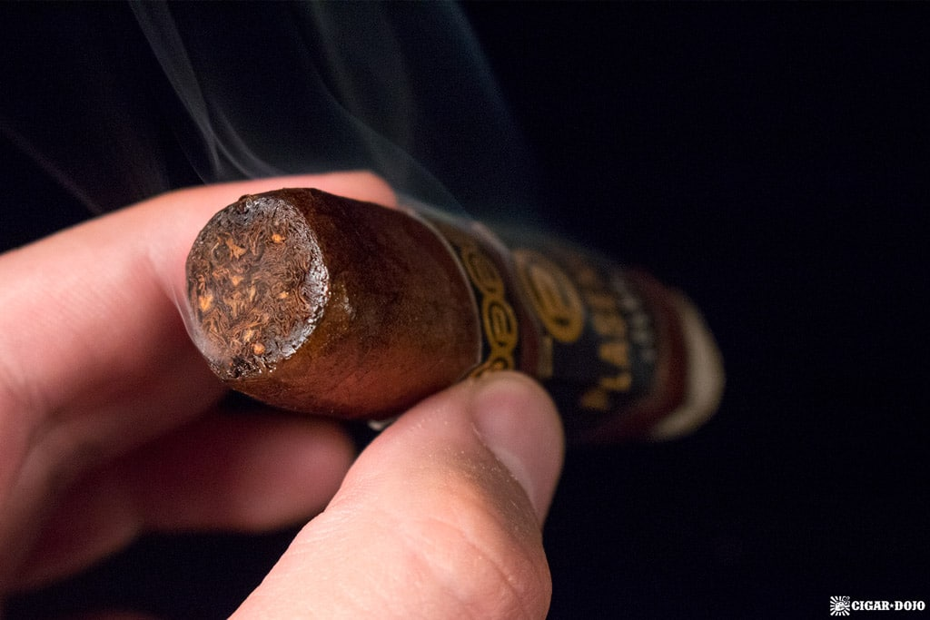 Plasencia Alma Fuerte Nestor IV cigar smoking