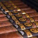 Plasencia Alma Fuerte Nestor IV cigars