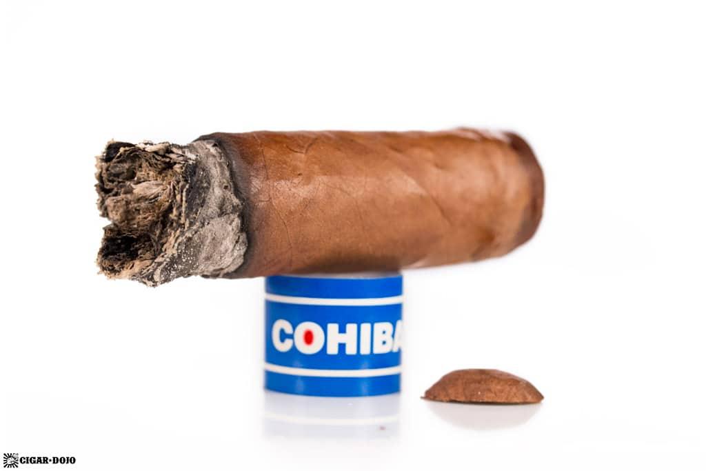 Cohiba Blue Robusto cigar nub
