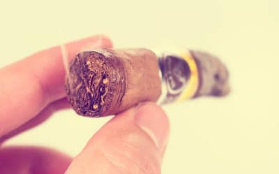JRE Tobacco Co. Aladino Robusto cigar review