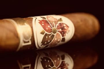 Room101 Caldwell Hit & Run Corona Gorda cigar review
