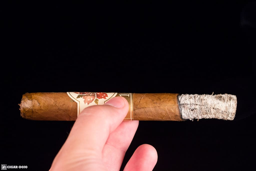 Room101 Caldwell Hit & Run Corona Gorda cigar ash