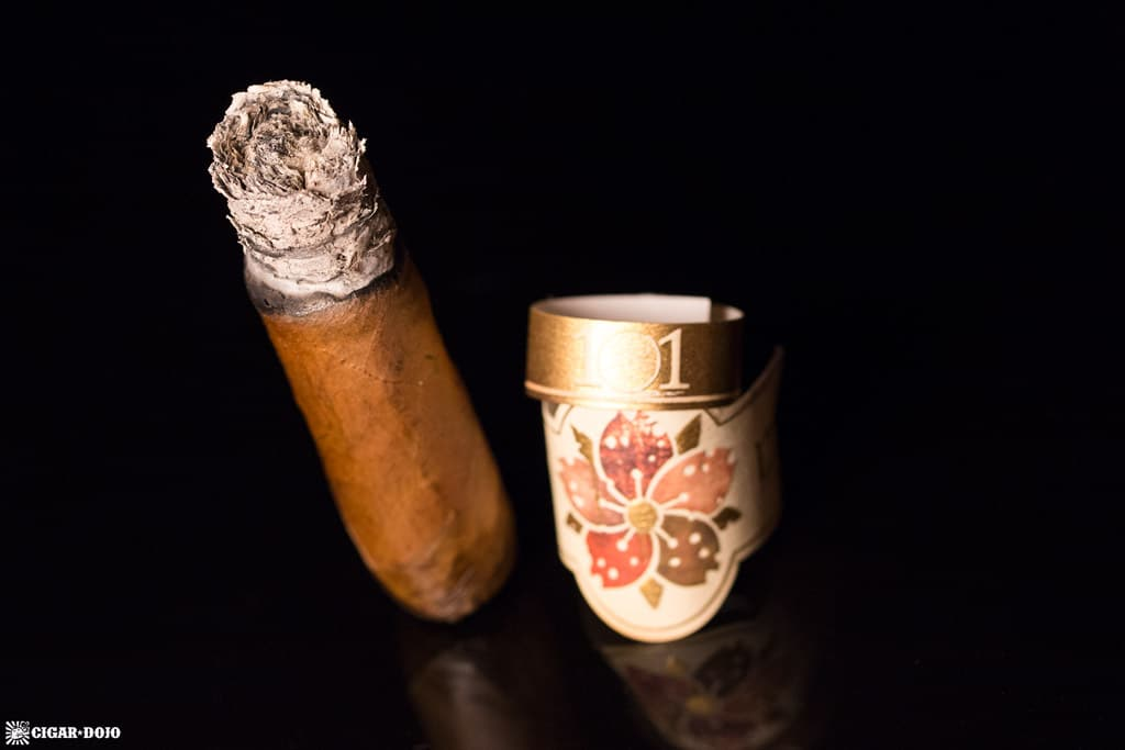 Room101 Caldwell Hit & Run Corona Gorda cigar nubbed