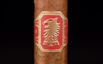 Drew Estate Undercrown Sun Grown Gran Toro cigar review