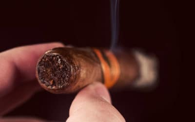 Mombacho Cosecha 2012 cigar review