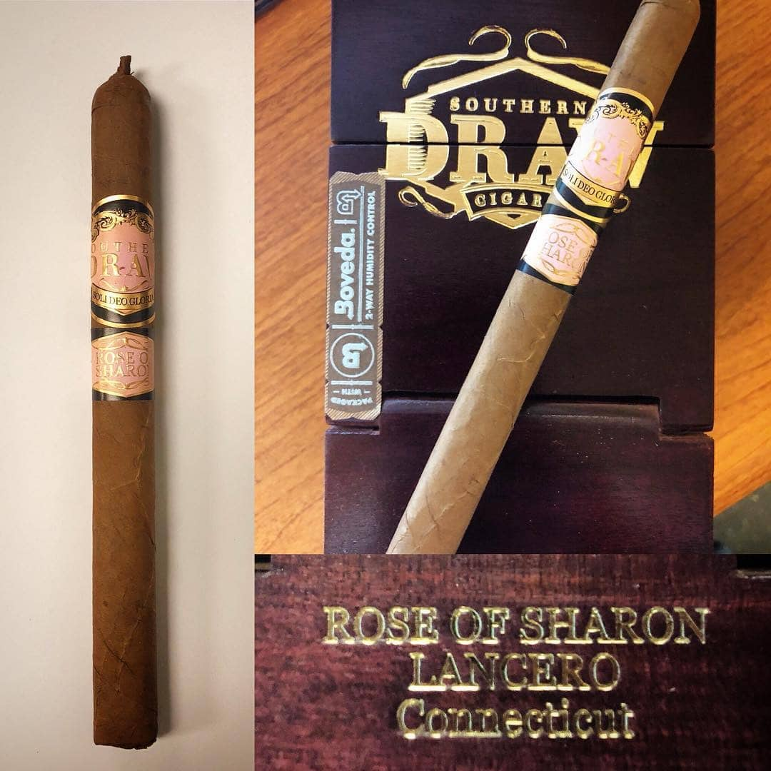 Southern Draw Rose of Sharon Lancero release