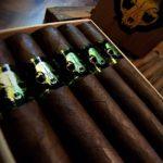 Emilio Grimalkin 2018 cigars