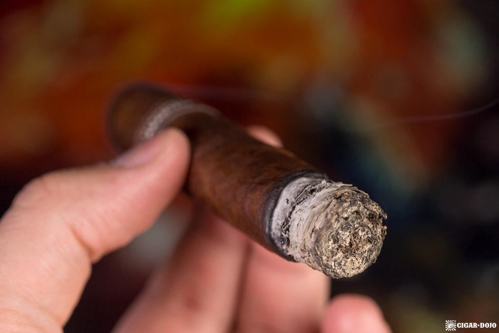 Illusione Garagiste Short Robusto cigar smoking