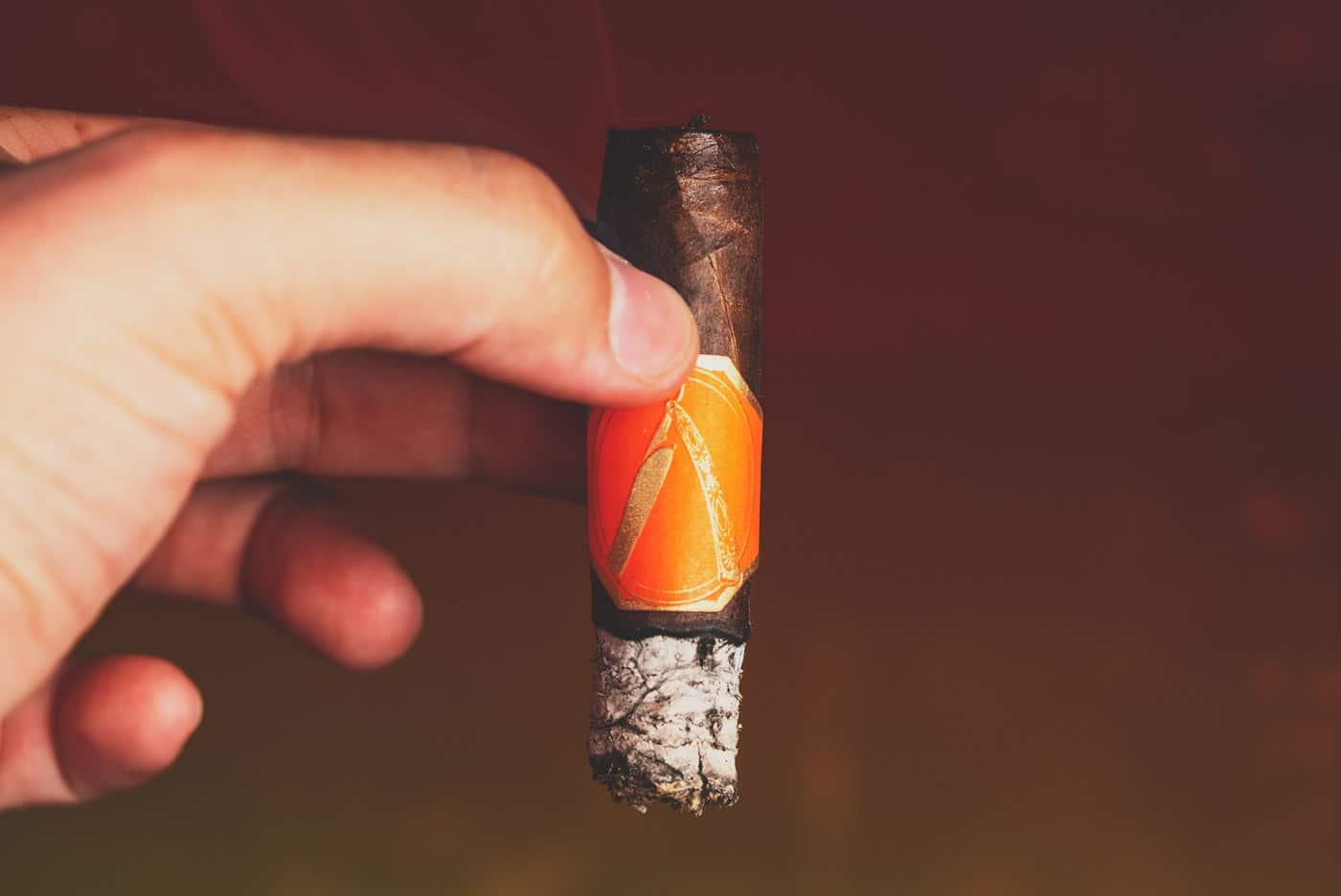 La Barba Primitivo corona gorda cigar review