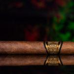 Partagas 1845 Clasico robusto cigar side view