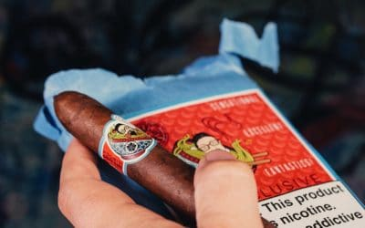 Room101 Cigar Dojo [untitled] noodles photo cigar review