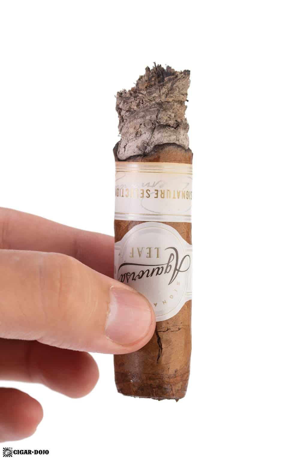 Aganorsa Leaf Signature Selection Robusto review