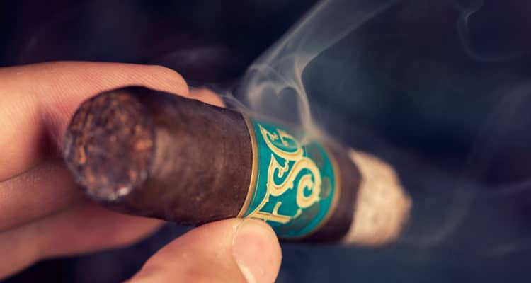 Drew Estate Florida Sun Grown Robusto cigar review