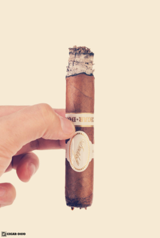 Davidoff Cigar Dojo Exclusive 2018 review