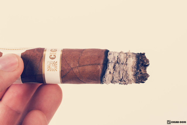 Davidoff Cigar Dojo Exclusive 2018 ash
