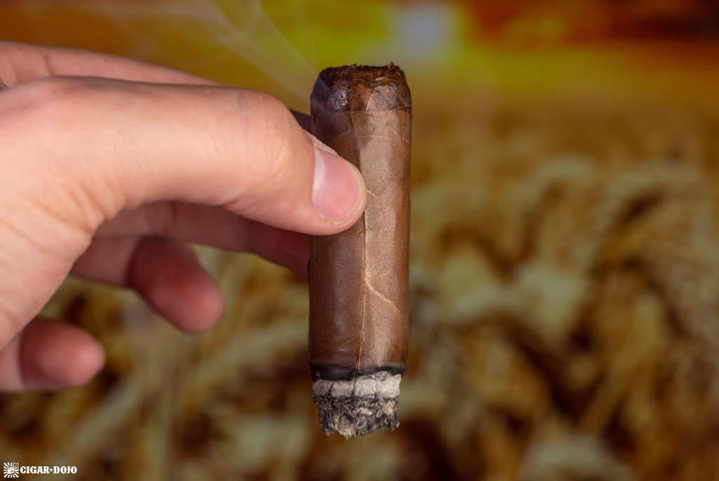 Diesel Whiskey Row Robusto cigar smoking