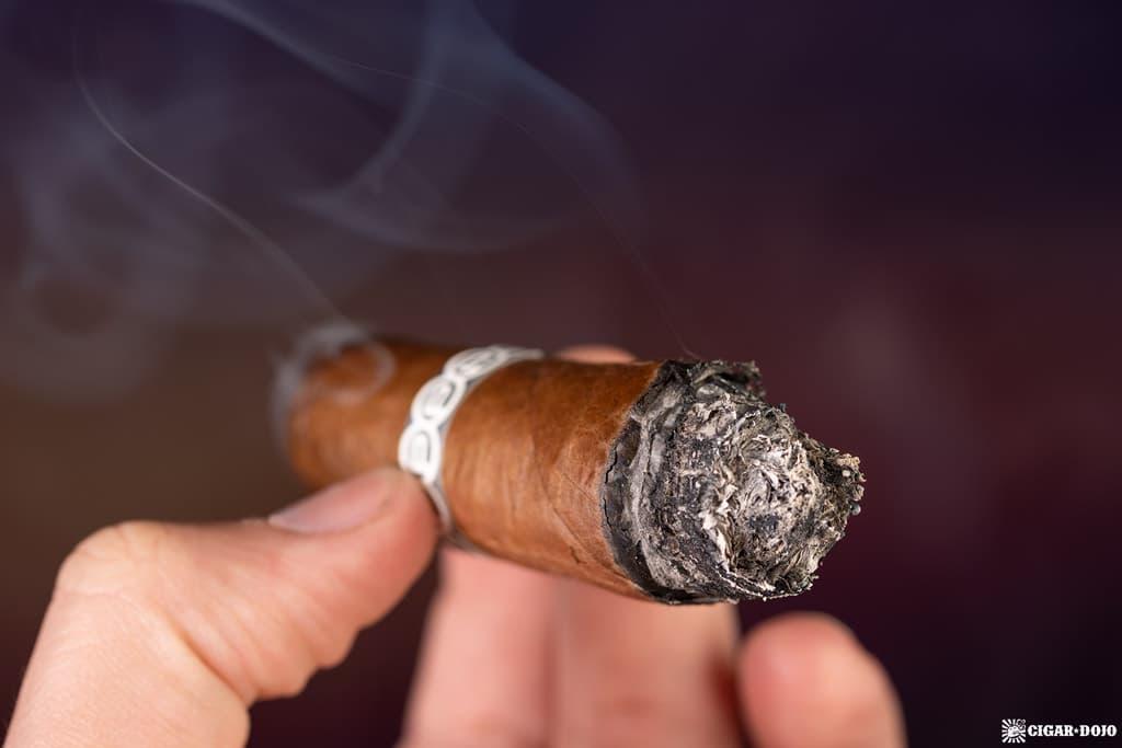 Plasencia Cosecha 146 La Vega cigar ash smoking