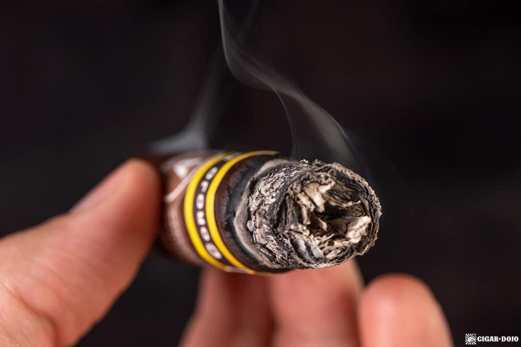 Aladino Corojo Reserva cigar ash
