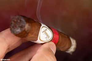 Davidoff Year of the Pig Limited Edition 2019 cigar smoking