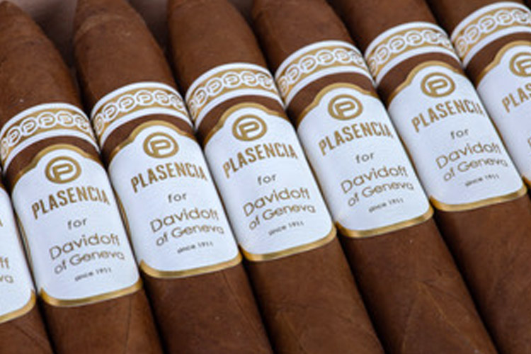 Plasencia Cigars for Davidoff of Geneva Since 1911